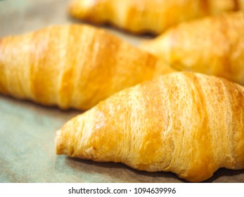 Croissant at closeup on baking paper