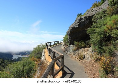 Crooked Path Up Mt. Tam