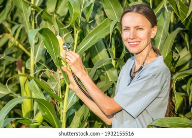 Crop care concept, woman with a stethoscope holding a cob