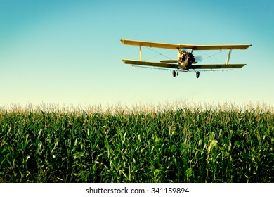 A crop duster flies low over a field of corn in rural Wisconsin.