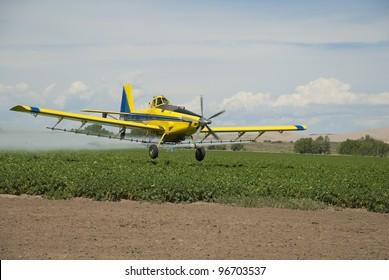 A crop duster sprays a field of Idaho potatoes.