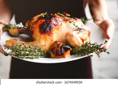 Crop female in black dress holding white plate with appetizing crusty roasted chicken with fruits and green thyme