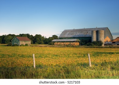 Crop field with farm structures on a background highlighted by a sunset