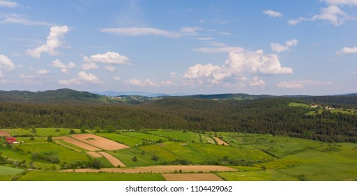 crop fields and forest