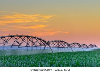 Crop irrigation in USA