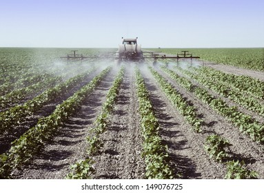 Crop sprayer spraying young cotton plants in a field in the San Joaquin Valley, California