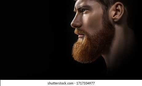 Croped shot of young bearded caucasian male model dramatic light studio shot. Grooming and barbershop commercial adv concept copy free space background