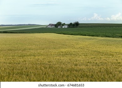 "Cropland with a typical ""Kellergasse"" in Lower Austria."