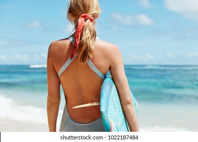 Cropped back view of sporty female dressed in swimwear, has light hair tied in pony tail holds surf board, stands against blue sea background admires beautiful scenery outdoor, involved in water sport