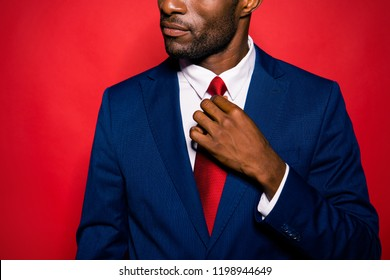 Cropped bearded content calm focused handsome authoritative rich wealthy man ceo boss chief wearing blue suit fixing tie details isolated over red background