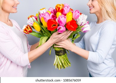 Cropped close up half face portrait, two cheerful woman, nice girl giving big colorful seasonal bouquet of tulips to her grandma, having fun, enjoying rest relax leisure isolated on grey background