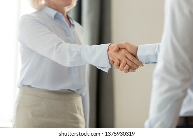 Cropped close up image middle aged business lady greeting corporate client shake hands company partner or investor, handshake symbol of regard respect first impression meeting and acquaintance concept