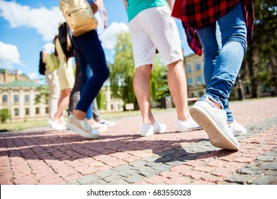 Cropped close up low angle photo shot of six student`s legs, walking on the cobbles. Sunny spring day, students are going to campus together