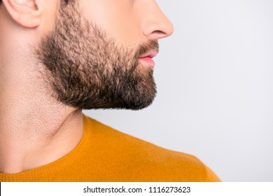 Cropped close up side profile view photo of handsome confident self-assured serious attractive man's bearded cheek looking aside isolated on gray background copy-sapce
