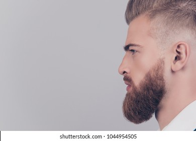 Cropped close up view half-faced portrait of serious proud posh elegant masculine with flawless skin groomed beard freelancer looking aside copyspace empty blank place isolated on gray background