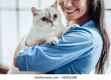 Cropped image of beautiful female doctor veterinarian is holding cute white cat on hands at vet clinic and smiling.