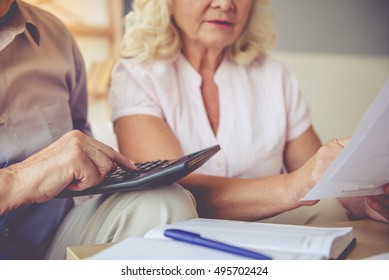 Cropped image of handsome old man and beautiful woman examining documents and using calculator while sitting on couch at home