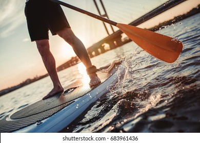 Cropped image of man on stand up paddle board. Having fun on SUP board during sunset. Active lifestyle.