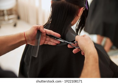Cropped photo of a coiffeur trimming the client wet hair ends using a comb and a pair of scissors