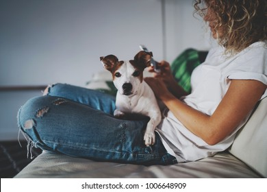 Cropped photo of a young blonde girl resting while sitting with her dog on the couch and using the modern cell phone. Hipster girl is shopping online with the application on her smartphone.