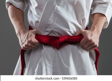 Cropped picture of handsome sportsman dressed in kimono practice in karate while tightening red belt isolated over grey background.