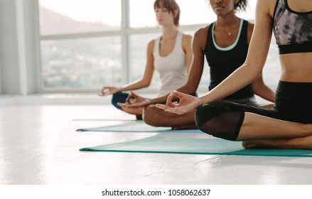 Cropped shot of fitness women practising yoga, sitting on floor with legs crossed and hands on knees. Group of people meditating in lotus yoga pose at gym class.