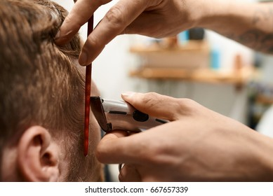 Cropped shot of master cutting hair of groom before wedding. Male with beard getting new haircut by barber. Hairstylist trimming hair of unrecognizable man with electric razor at hairdresser's