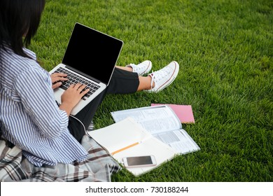 Cropped view of female student typing on laptop, sitting on grass, outdoor