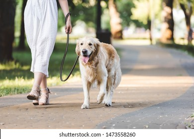 cropped view of girl in white dress walking with golden retriever on pathway