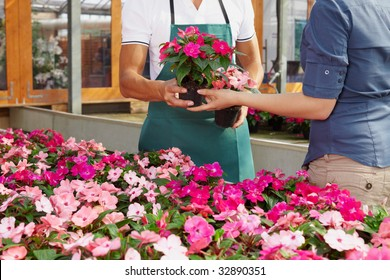 cropped view of woman shopping in flower shop