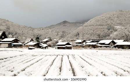 crops field covered with snow with village background