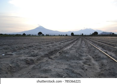 Crops at the foot of the mountain