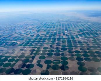 Crops utilizing center pivot irrigation system