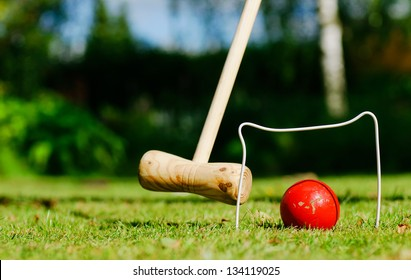 Croquet in the garden on a summer day