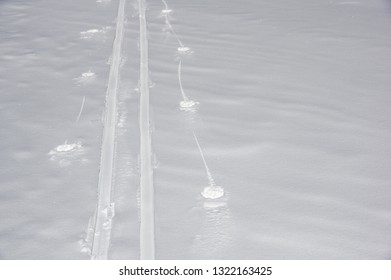 cross country ski track in fresh snow with copyspace