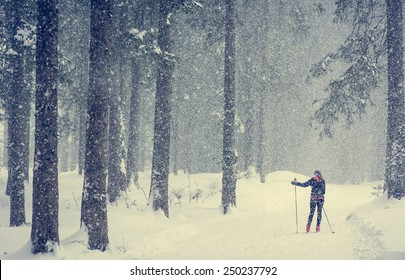 Cross country skier skiing pausing to find direction in bad weather.