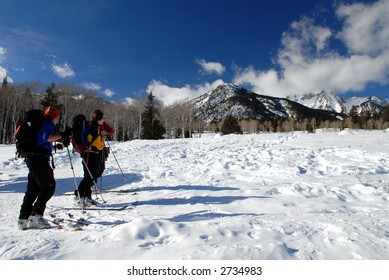 Cross Country Skiers in Grand Teton National Park