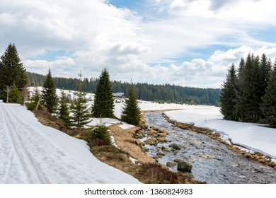 "Cross country skiing and hiking trail in Sumava mountains. Early spring with snow on a cloudy day. Trail from ""Poledník"" to Modrava. March, Czech republic, Europe."