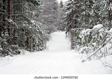 Cross country skiing on a cold and snowy winter day in Dalarna in Sweden.