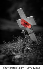 A cross and poppy mark the line of the trenches at the World War 1, the Great War, battlefield of Vimy Ridge, France