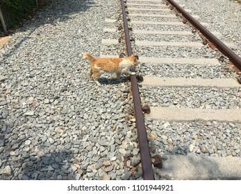 cross the railroad