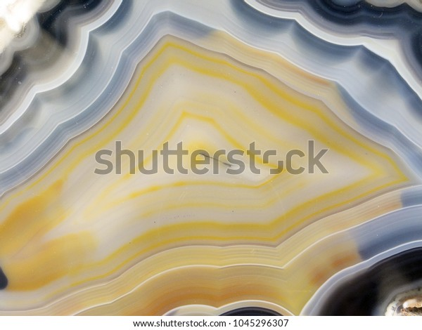 Cross section of agate, a translucent microcrystalline quartz, usually formed by deposits of silica in the cavities of igneous rocks.