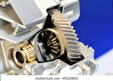 Cross section of a car differential.