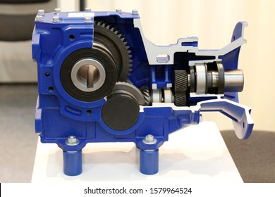 Cross section of the gearbox. Worm gearboxes for aggressive environments. Drive technology - worm gear motor. Power transmission by rotation. Reduction.