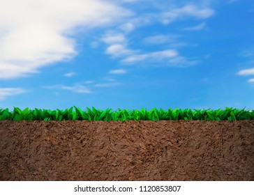 Cross section of grass and soil, on blue sky clouds background.