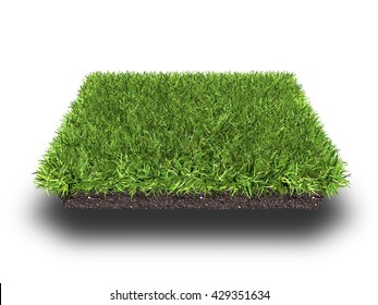 cross section of ground with grass isolated on white, 3d rendering