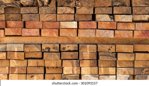 Cross section of sawn timber