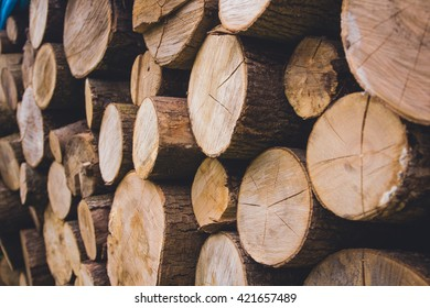 Cross section of the timber for the background. photo of a pile of natural wooden logs background, top view
