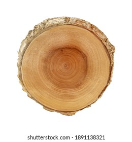 Cross section of tree trunk showing growth rings isolated on white background with clipping path included.