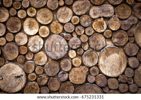 cross section tree trunks background decoration stock photo edit rh shutterstock com